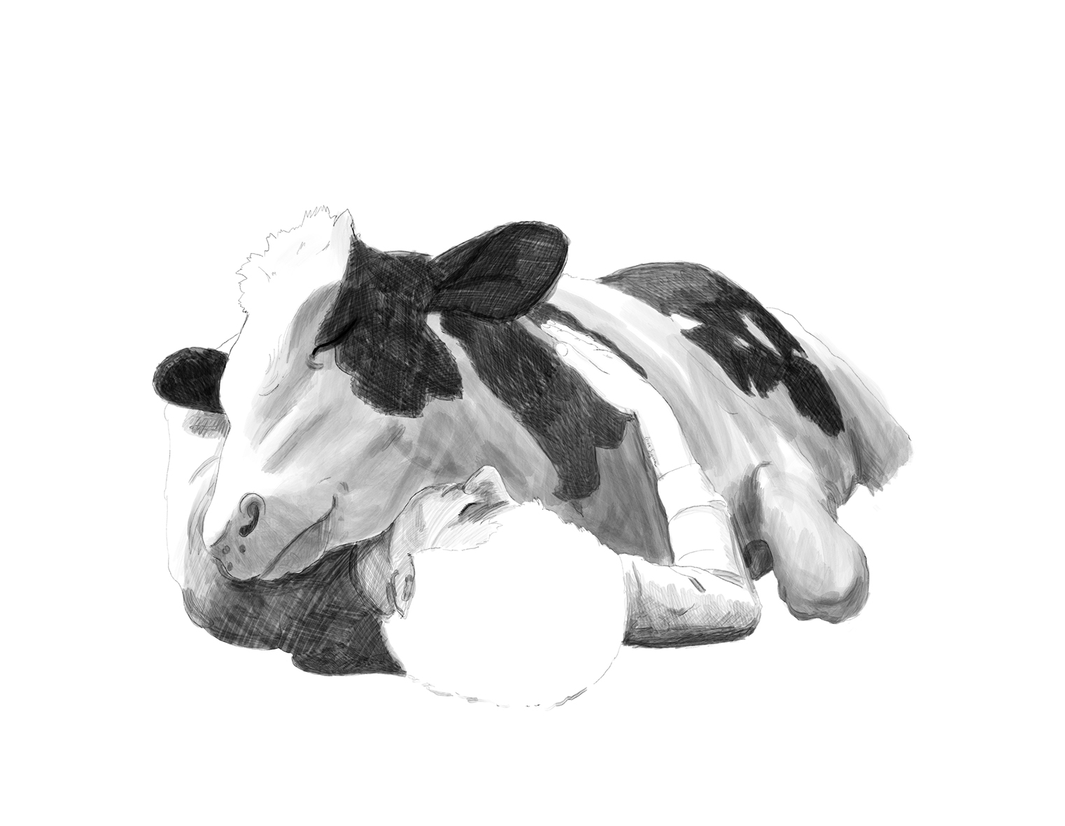 Vegan illustration of a person and a cow relaxed on the floor with a smile. Animal portrait in black and white.